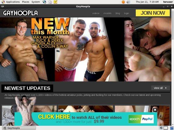 Gay Hoopla Porn Discounts